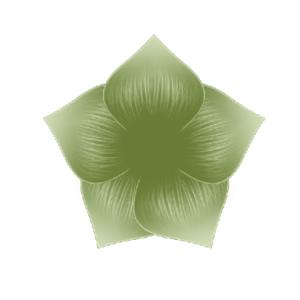 Akril festék - olivazöld - Perfect nails